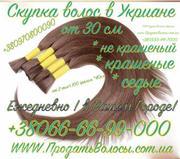 Скупка волос дорого по всей Украине