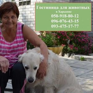 Настоящая Зоогостиница для животных в Харькове