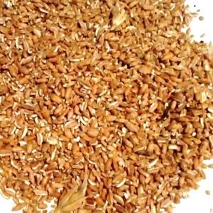 Пшеница в мешках. Корм с/х животным и птицам