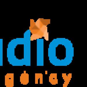 Разработка и создание сайтов в Харькове